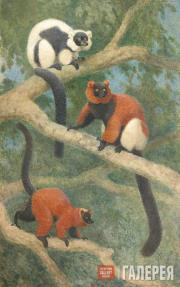 Vatagin Vasily. Dimorphism of Lemurs. 1934
