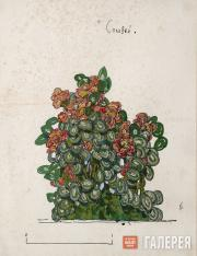 "Golovin Alexander. Design for a plant in the Emperor's garden III, ""The Nighting"