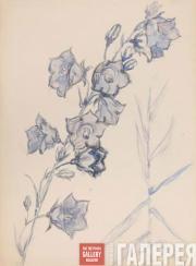 Yakunchikova Maria. Bluebell. 1880-1890s