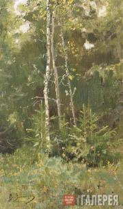 Vasnetsov Viktor. At the Fringe of a Forest. Akhtyrka. Sketch