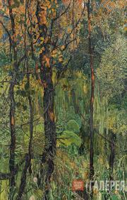 Golovin Alexander. Overgrown Swamp. 1917