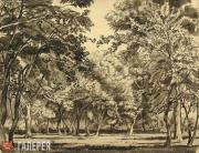 Konstantin BOGAEVSKY. Forest. 1912