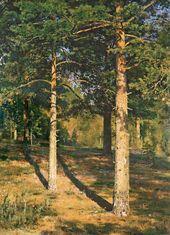 Sunlit Pine Trees. 1886