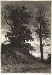 Little Oaks. 1886