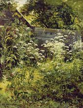 A Corner of Overgrown Garden. Aise-weed. 1884