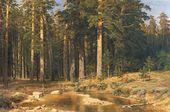 Mast-tree Grove. 1898