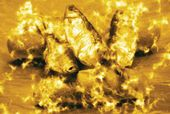 Gor Chahal. Miracle. 2010
