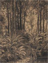 Ivan SHISHKIN. Ferns in a Forest. 1877