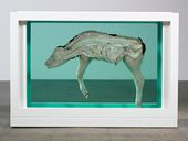 """The calf (interior view) from """"Mother and Child (Divided)"""". Exhibition copy, 2007 (original 1993). © Damien Hirst and Science Ltd. All rights reserved, DACS 2012"""