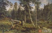 Shishkin Ivan. Logging. 1867