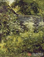Шишкин Иван Иванович. Уголок заросшего сада. Сныть-трава. 1884