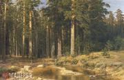 Shishkin Ivan. Mast-tree Grove. 1898