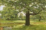 Shishkin Ivan. Oaks in Old Peterhof. 1891
