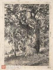 Shishkin Ivan. Old Oak. 1897