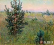 Якунчикова Мария. Сосенка. 1890–1893