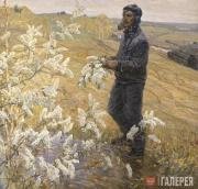 Viktor DMITRIEVSKY. Bird-Cherry in Blossom. 1971