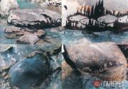 Надалиан Ахмад. В реке еще есть рыба. 2001