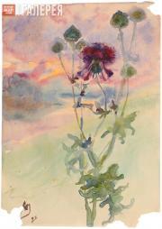Якунчикова Мария. Чертополох. 1898