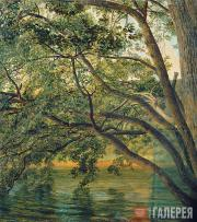 Ivanov Alexander. A Tree at the Side of Lake Nemi