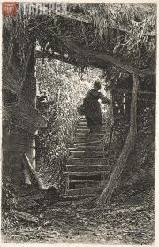 Шишкин Иван Иванович. Крестьянка, сходящая с лестницы. 1875
