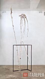 Чарлз ЛОНГ. Без названия. 2006