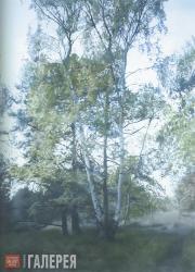 Paul WINSTANLEY. Birch 1. 2004
