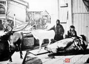 Павильон Крайнего Севера на Нижегородской выставке 1896 года