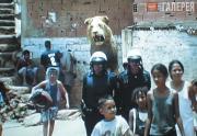 Тельес Хавьер. Лев в Каракасе. 2002