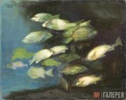 White Nelson. The Fish Bahamas. 2004