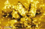 Chahal Gor. Miracle. 2010
