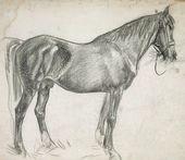 "The Horse ""Elbrus"". 1936"
