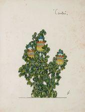 А.Я. ГОЛОВИН. Эскиз растения в саду Императора II, «Соловей». 1918
