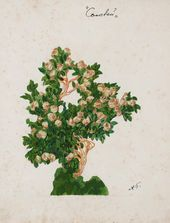 """Alexander GOLOVIN. Design for a plant in the Emperor's garden IV, """"The Nightingale"""". 1918"""