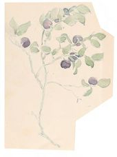 Maria YAKUNCHIKOVA. Blueberries. 1898
