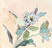 Maria YAKUNCHIKOVA. Flower. 1890s