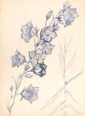 Maria YAKUNCHIKOVA. Bluebell. 1880-1890s