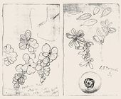 """Maria YAKUNCHIKOVA. Тhe page spread from the artist's diaries developing the motif of """"Cowberries"""". January 22, 1898"""