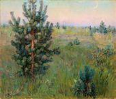Maria YAKUNCHIKOVA. Pine Sapling. 1890–1893