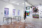 """Exhibition view """"Money and Psyche"""". Halle für Kunst Lüneburg, 2018"""