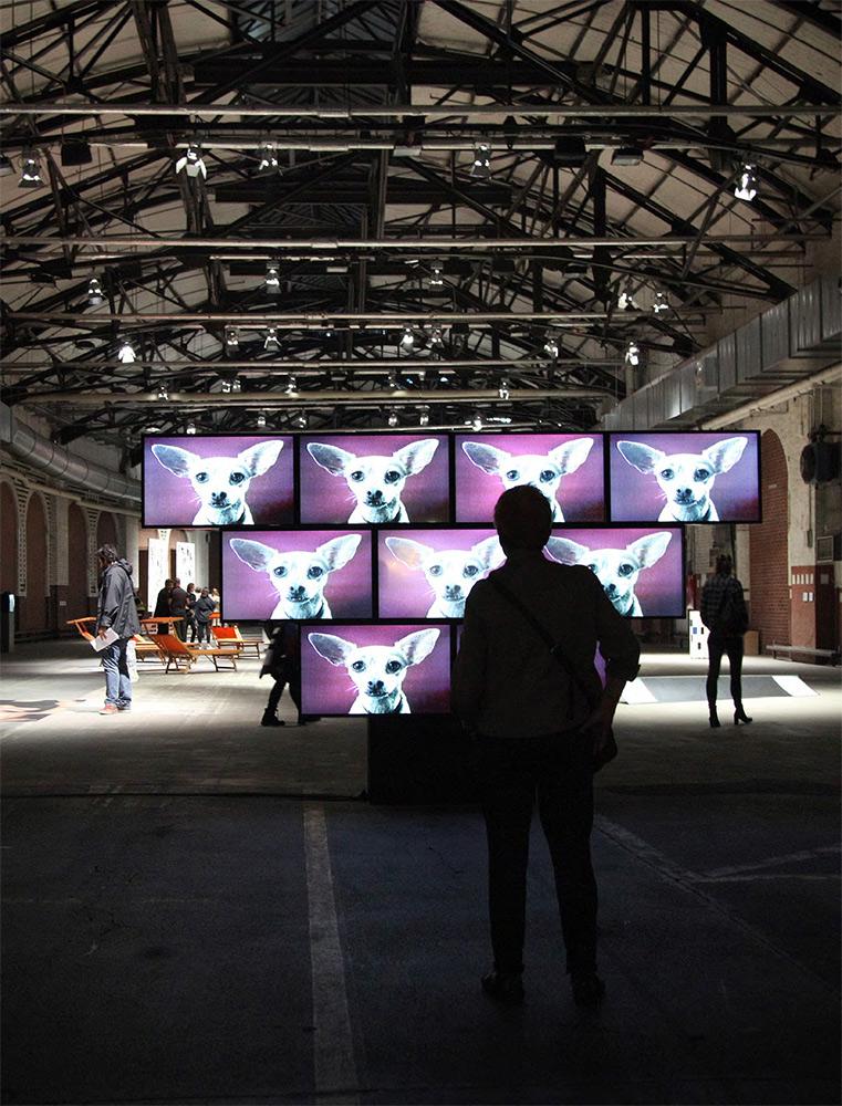 ELAINE STURTEVANT. Installation at abc art berlin contemporary