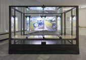 JON RAFMAN. Betamale Trilogy (Glass cabin). 2015