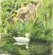 Белая уточка. Этюд для иллюстрации к сказке «Белая уточка». 1886