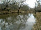 Фотография современного вида реки Пекша