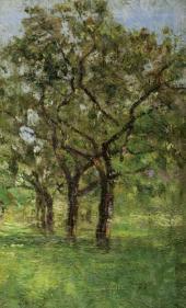 Яблоневые деревья в саду в Жюпиле. 1913