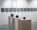Cube.Moscow и Московская школа современного искусства объявили о долгосрочном сотрудничестве