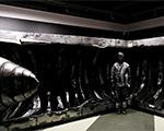 Художник-невидимка Лю Болин «спрятался» в музее Эрарта